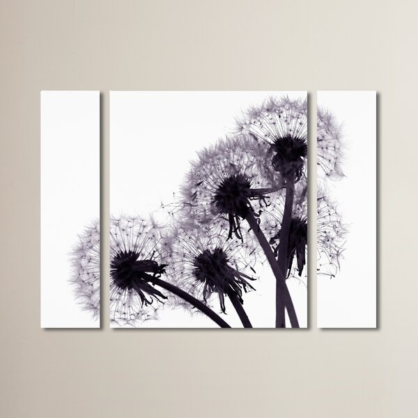 Bunch of Wishes 3 Piece Photographic Print on Wrapped Canvas Set by August Grove