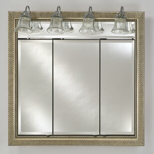 Best Eagle Bevel Mirror By Charlton Home