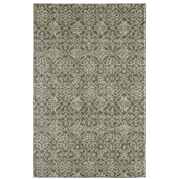 Mohawk Laguna Seville Aqua Area Rug by Under the Canopy