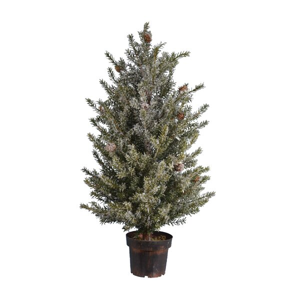 Pine Tree by The Holiday Aisle