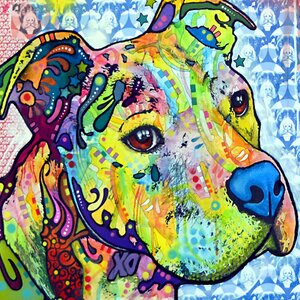 Thoughtful Pit Bull This Years I Graphic Art on Wrapped Canvas by Wrought Studio