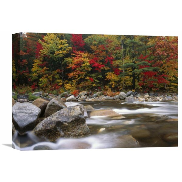 Nature Photographs Wild River in Eastern Hardwood Forest, White Mountains National Forest, Maine Photographic Print on Wrapped Canvas by Global Gallery
