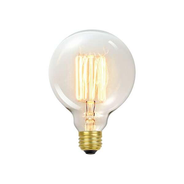 60 Watt E26 Dimmable Incandescen Edison Light Bulb by Globe Electric Company