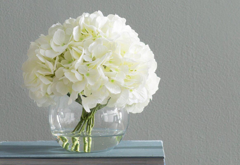 White Hydrangea Floral Arrangements Amp Reviews Birch Lane