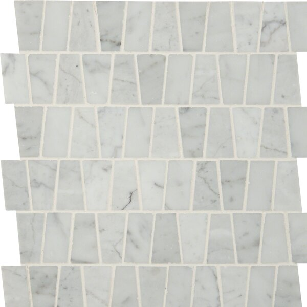 Polished Marble Mosaic Tile in White by MSI