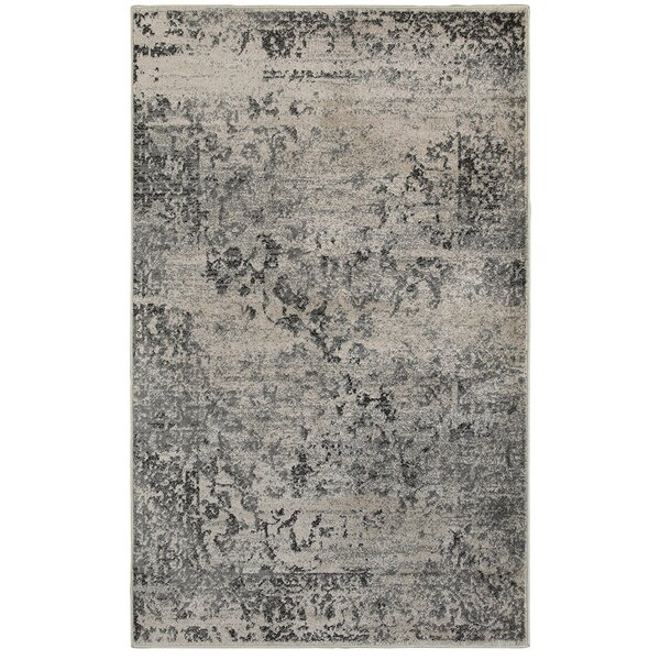 Rockford Black/Gray Area Rug by Trent Austin Design