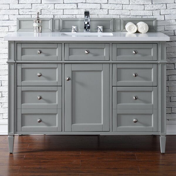 Deleon 48 Single Urban Gray Bathroom Vanity Set by Darby Home Co