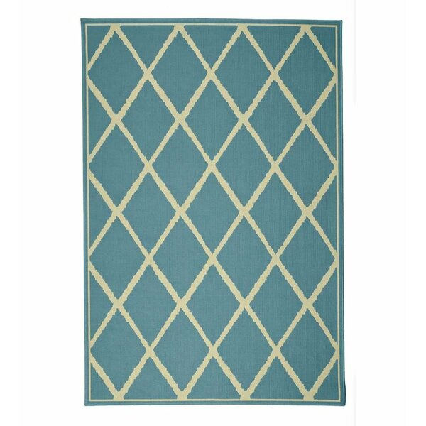 Surry Flat Woven Light Blue Indoor/Outdoor Area Rug by Plow & Hearth
