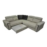 https://secure.img1-ag.wfcdn.com/im/35837297/resize-h160-w160%5Ecompr-r85/4119/41191170/cheshire-sleeper-sectional.jpg
