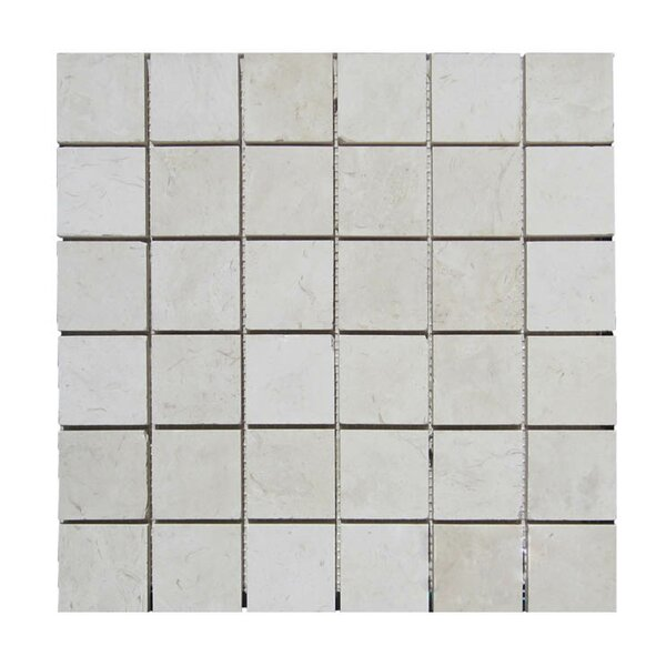 Honed 2 x 2 Natural Stone Mosaic Tile in Freska by QDI Surfaces