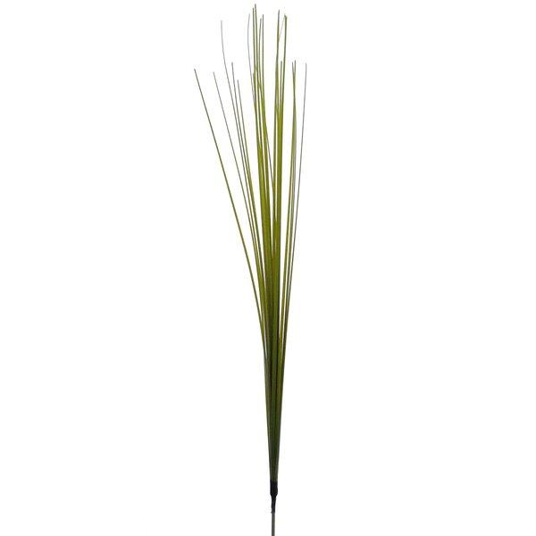 Onion Spray Floor Grass (Set of 120) by Highland Dunes