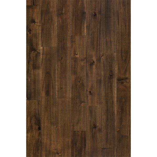 Anderson 3-3/4 Solid Acacia Hardwood Flooring in Oolong Brown by Welles Hardwood