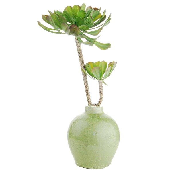 Faux Duo Succulents Desk Top Plant in Decorative Vase by LCG Florals