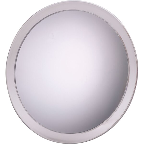 Portable Suction Shower Mirror by Symple Stuff