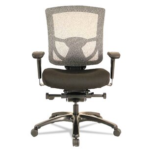 Raynor Mesh-Back Office Chair By Tempur-Pedic
