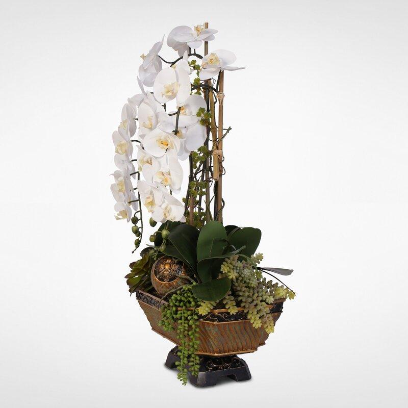 floral home decor orchid floral design wayfair.htm astoria grand phalaenopsis orchids floral arrangements and  astoria grand phalaenopsis orchids