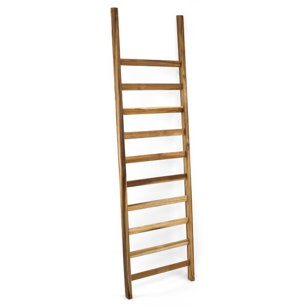 Takara 5 ft Decorative Ladder by Design Ideas