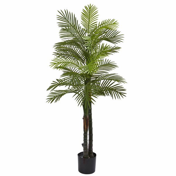 Double Robellini Palm Tree in Planter by Nearly Natural