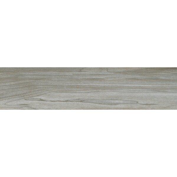 Carolina 6 x 24 Ceramic Wood Look/Field Tile in Gray by MSI