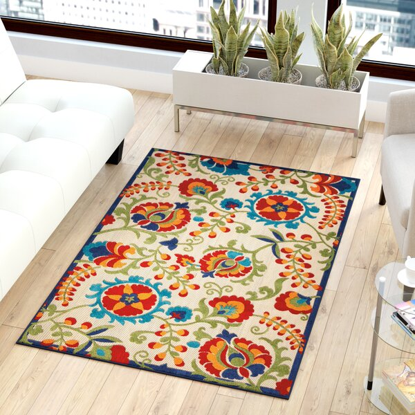Lahaina Donohoe Multicolor Indoor/Outdoor Area Rug by Sol 72 Outdoor
