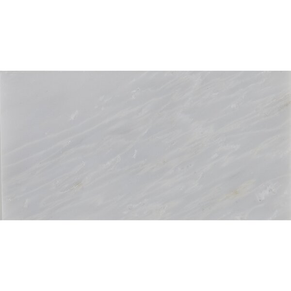 Harrison 3 x 6 Marble Subway Tile in First Snow Elegance