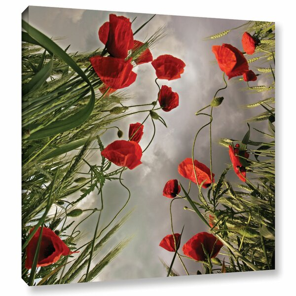 Square Composition with Poppies Photographic Print on Wrapped Canvas by Latitude Run