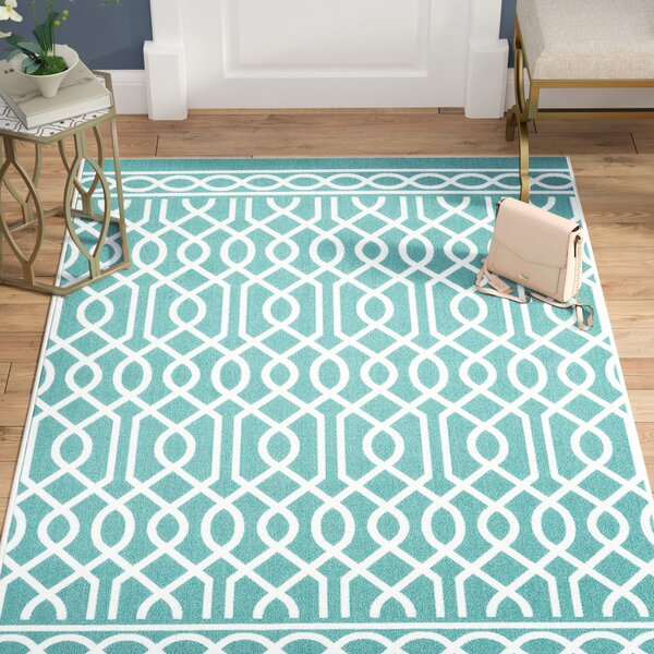 Chaunce Twisted Rope Aqua Area Rug by Willa Arlo Interiors