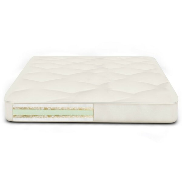 Back Care Plus 9 Soy Foam Futon Mattress by The Futon Shop