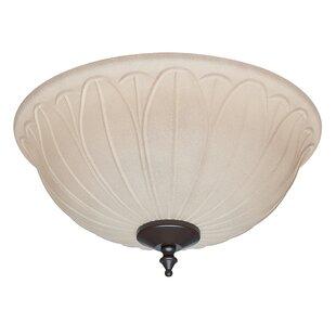 Reviews 2-Light Bowl Ceiling Fan Light Kit By Hunter Fan