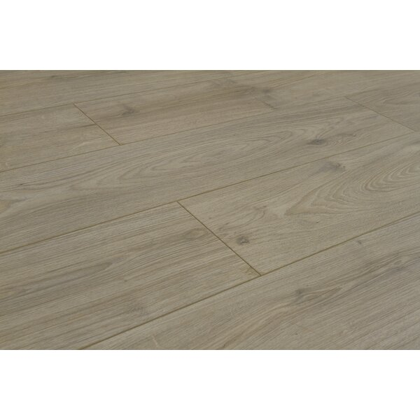 Legno 8 x 48 x 12mm Laminate Flooring in Padua Clay by Patina Design