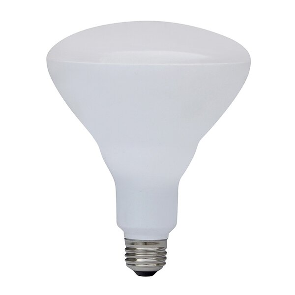 17W LED Light Bulb by IRIS USA, Inc.