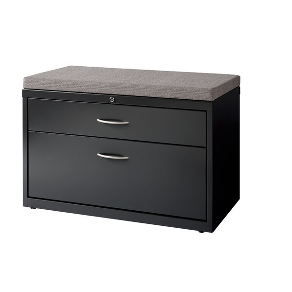 Derek 2-Drawer Box/File Lateral Cabinet by Symple Stuff
