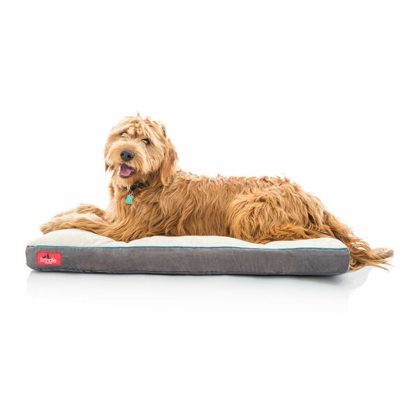 Soft Shredded Memory Foam Pet Bed by Brindle