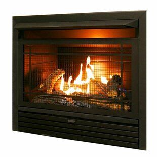 Hardwick Dual Fuel Fireplace Insert by Charlton Home