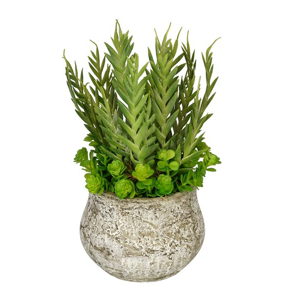 Artificial Succulent Garden Desk Top Plant in Pot by House of Silk Flowers Inc.