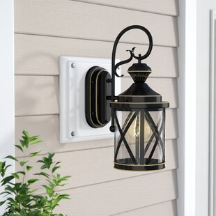 Black outdoor onion lights wayfair langport 1 light black outdoor wall lantern aloadofball Choice Image