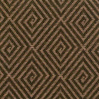 Teak Indoor/Outdoor Area Rug by The Conestoga Trading Co.