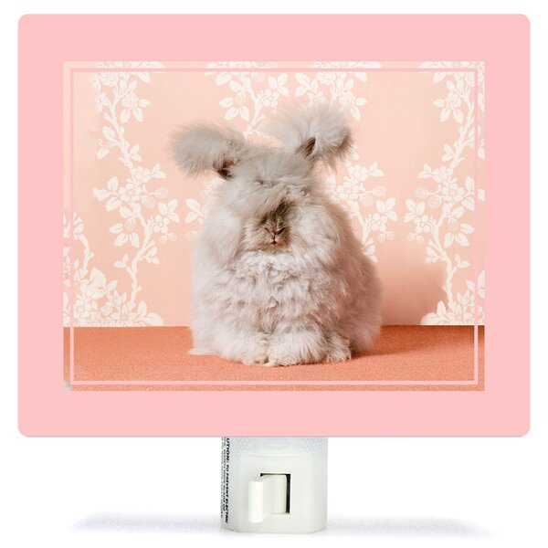 Bunny Catherine Ledner Canvas Night Light by Oopsy Daisy