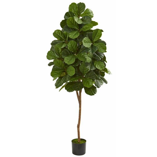 Fiddle Leaf Fig Floor Foliage Tree in Planter by Charlton Home