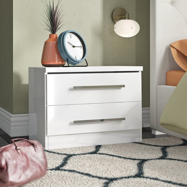 Haskett 2 Drawer Nightstand by Brayden Studio