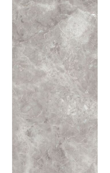 Asiago 12 x 24 Porcelain Filed Tile in Gray by Tesoro