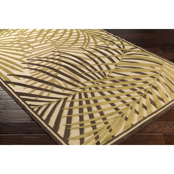 Caravel Dark brown/ Camel Indoor/Outdoor Area Rug by Bay Isle Home
