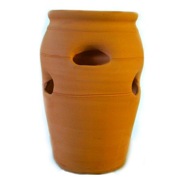 Ashlynn Strawberry Herb Clay Pot Planter by World Menagerie