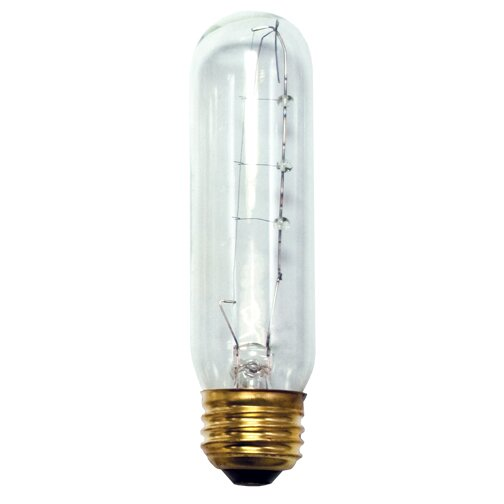 40W (2500K) Incandescent Light Bulb (Set of 18) by Bulbrite Industries