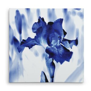 'Blue Ice Iris' Graphic Art Print on Wrapped Canvas by Ivy Bronx