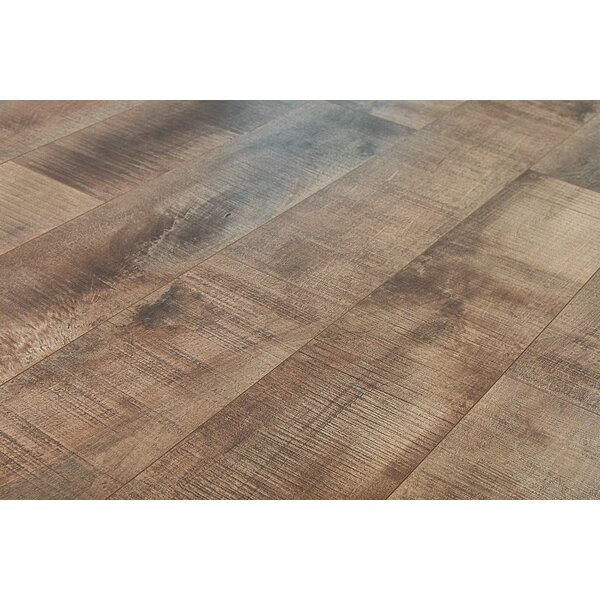 Summa 6.5 x 48 x 12mm Oak Laminate Flooring in Refined Brass by Montserrat