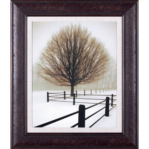 Solitude by David Lorenz Winston Framed Photographic Print by Art Effects