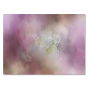 'White Peony 2' Graphic Art Print on Wrapped Canvas by Trademark Fine Art