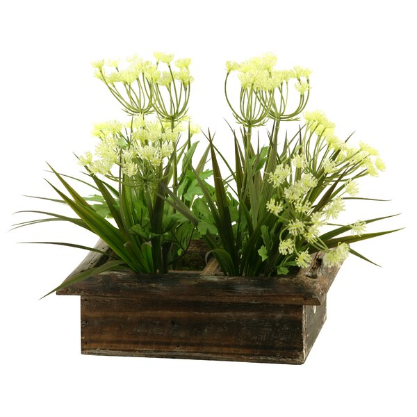 Desktop Flowering Grass in Planter by Ophelia & Co.