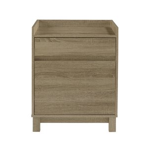 Hoggard 2 Drawer Filing Cabinet